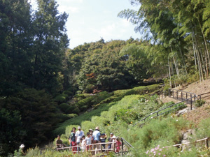 こども自然観察体験イベント(8月は入園料無料)